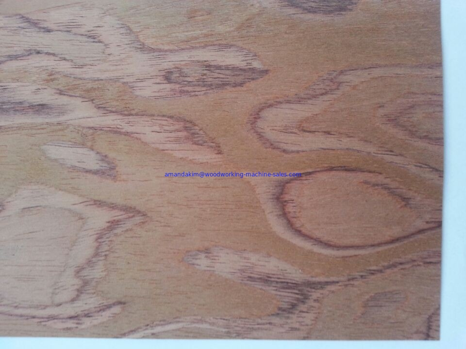 Natural Wood Veneer Movable Partition Walls With Melamine